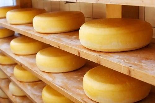 Calupuri de brânză cheddar