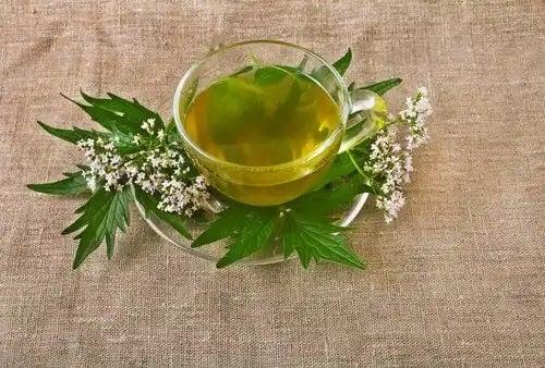 Ceai din plante pentru ameliorarea durerii