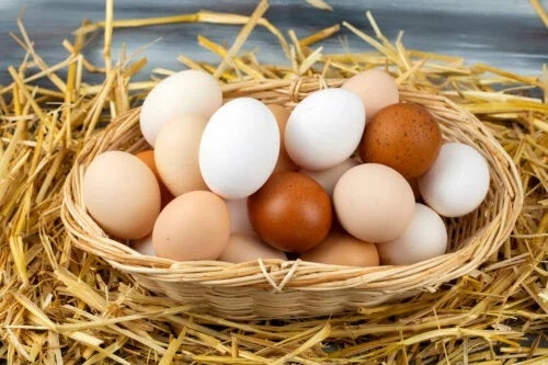 De ce ar trebui să mâncăm ouă de mai multe ori pe săptămână