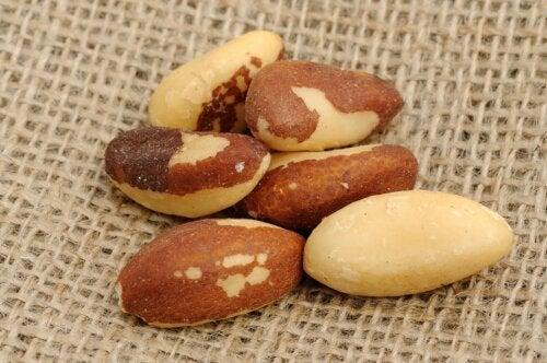 Nuci de Brazilia: proprietăți, nutriție și utilizări în bucătărie