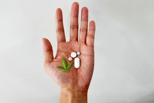 Utilizarea marijuanei medicale pentru durerea cronică: este sigură?