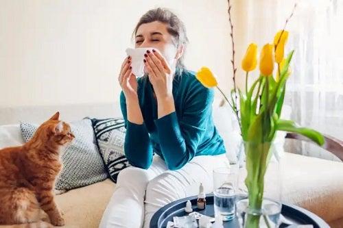 Tipuri de medicamente utilizate pentru tratarea alergiilor