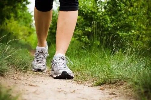 Mersul pe jos în pădure