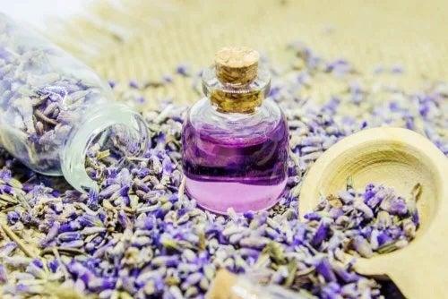Cum poți parfuma casa natural cu lavandă